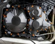Lightech Carbon Teile