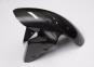 LighTech Carbon, vordere Kotflügel glänzend.